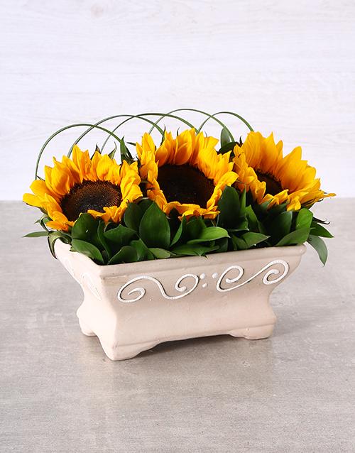 house-warming: Windowsill Sunflowers!