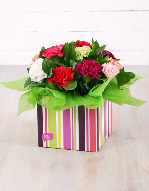 in-a-box: Mixed Carnations in Striped Box!