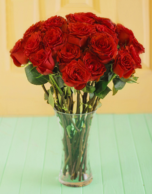 roses: Red Giant Ethiopian Roses in a Vase!