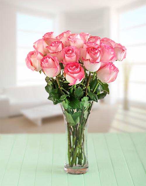 seasonal: Pink Giant Ethiopian Roses in a Vase!