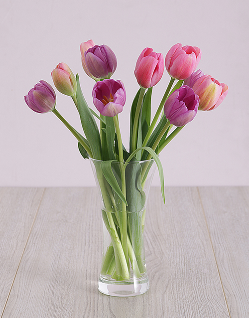 tulips: Pink and Purple Tulips in Vase!