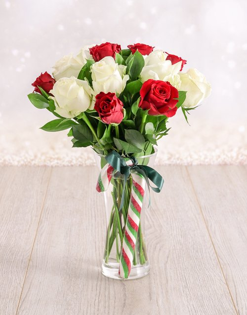 roses: Red and White Candy Cane Roses in a Vase!