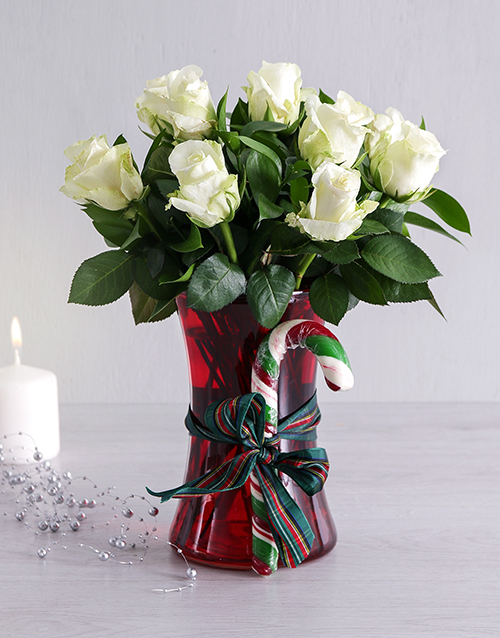 roses: White Candy Cane Rose Vase!