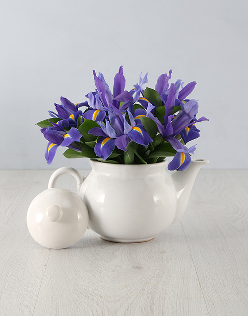 pottery: Irises in a Teapot!