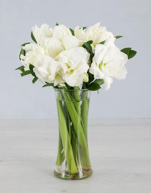 flowers: Cut Amaryllis in Medium Clear Flair Vase!