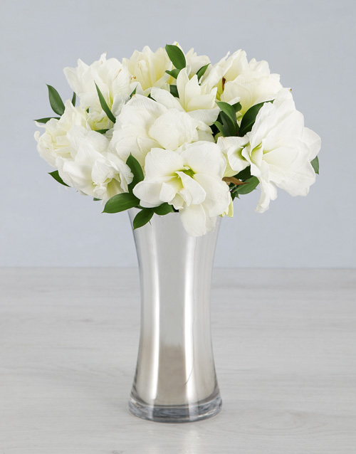 coloured-vases: Cut Amaryllis in Silver Flair Vase!