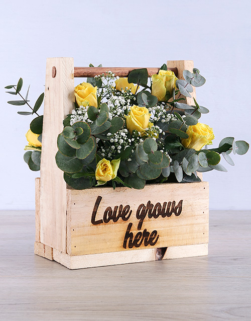 roses: Breathtaking Yellow Rose in Wooden Crate!