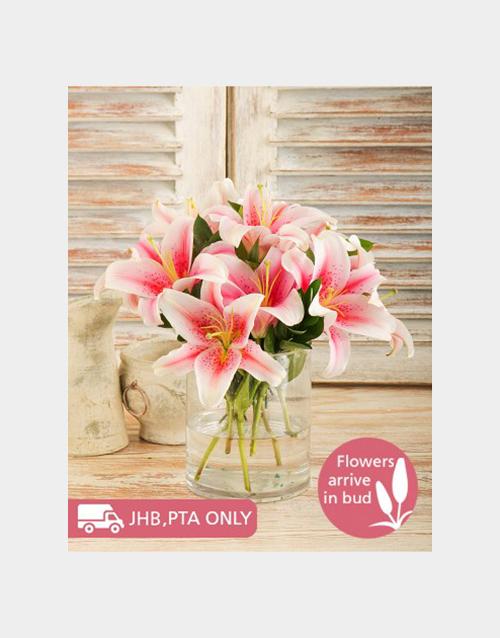 colour: Cylinder Vase of Stargazer Lilies!