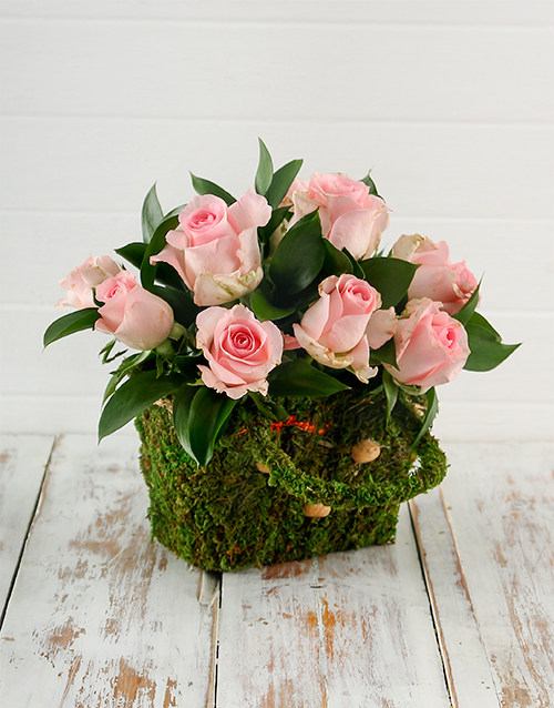 apology: Charming Pink Roses in a Moss Basket!