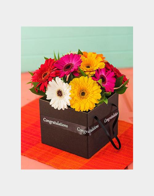 colour: Congratulations Mini Gerbera Box!