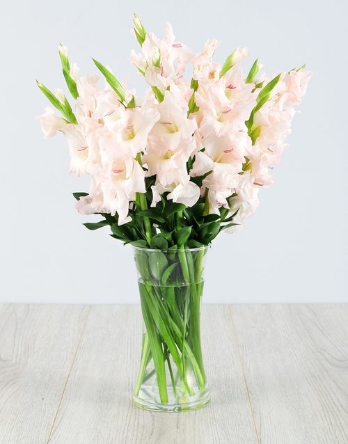flowers: Light Pink Gladiolus in a Glass Vase!
