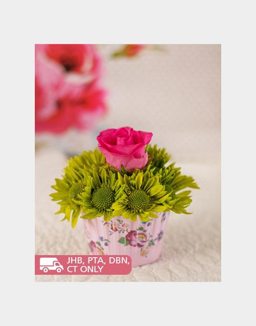 colour: Rose & Sprays Cupcake!