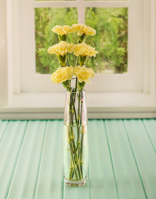 prices: Simply Six Yellow Carnations!