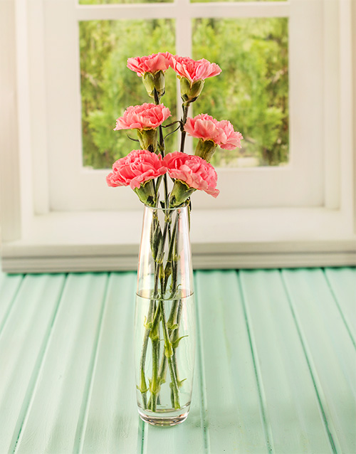 prices: Simply Six Pink Carnations!