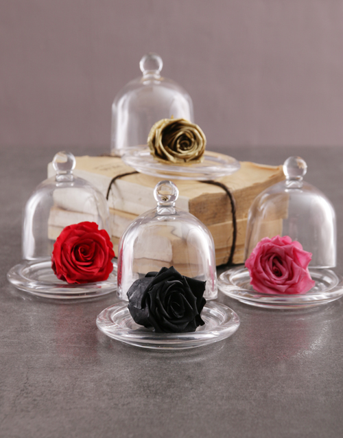 silk: Small Glass Dome Containing A Preserved Rose!