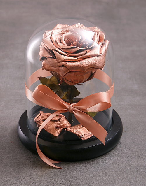 silk: Tale As Old As Time Preserved Bronze Rose!