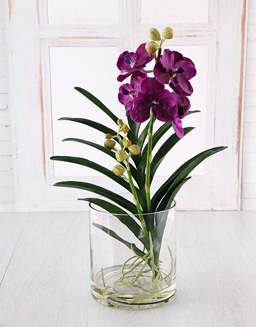 Vanda Orchid In A Glass Vase Online