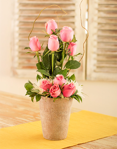 roses: Pink Roses in Pottery!
