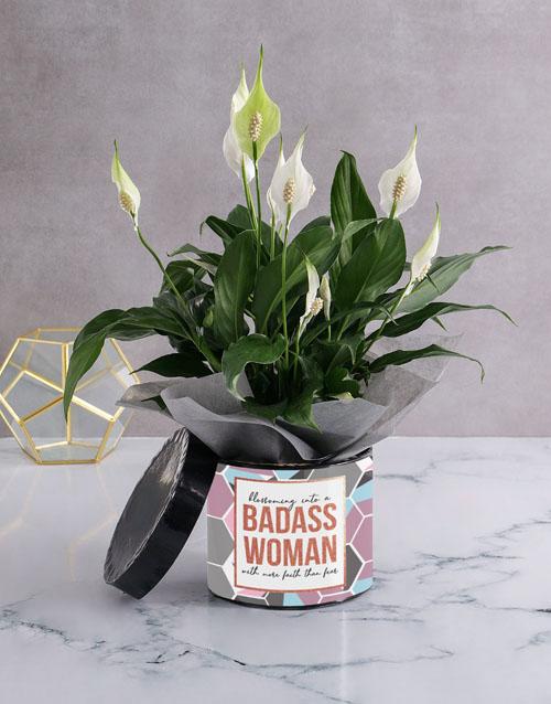 teachers-day: Badass Spathiphyllum Plant!