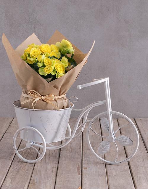 baby: Yellow Begonia In Bike Pot!