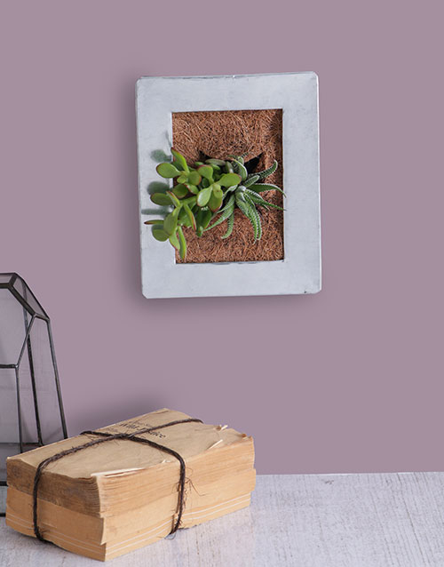 flowers: Succulent Photo Frame!