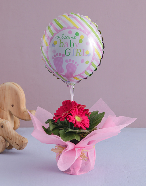 baby: Wrapped Gerbera Plant for a New Baby!