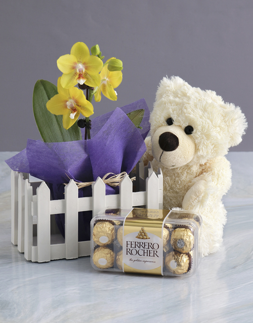 baby: Midi Orchid Picket Fence Bundle!