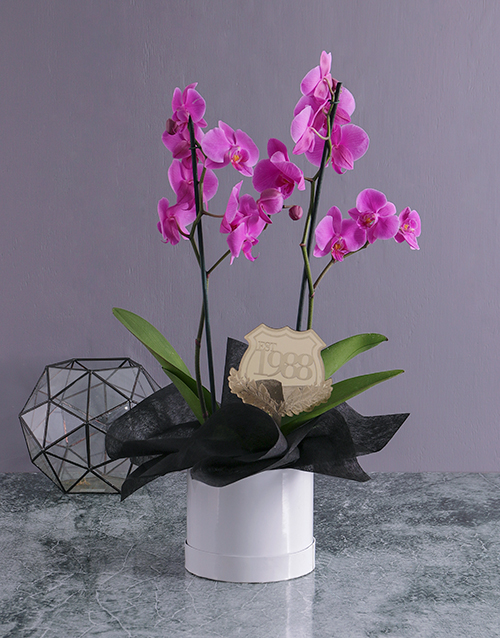 in-a-box: Personalised Date Orchid in a Hatbox!