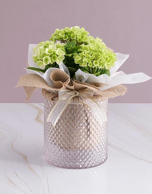 love-and-romance: White Hydrangea Hessian Arrangement!