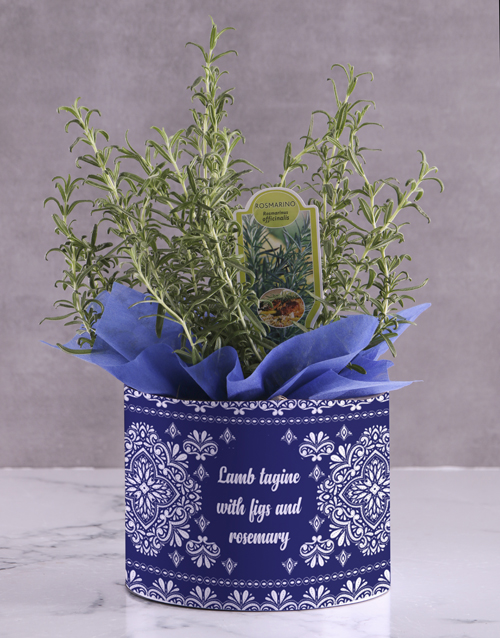 flowers: Rosemary Plant with Special Recipe!