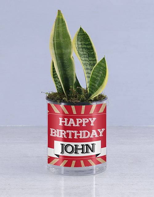 green: Personalised Happy Birthday Sanseveria!