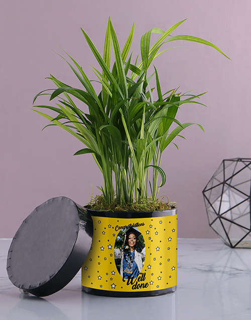 personalised: Personalised Well Done Areca Palm!