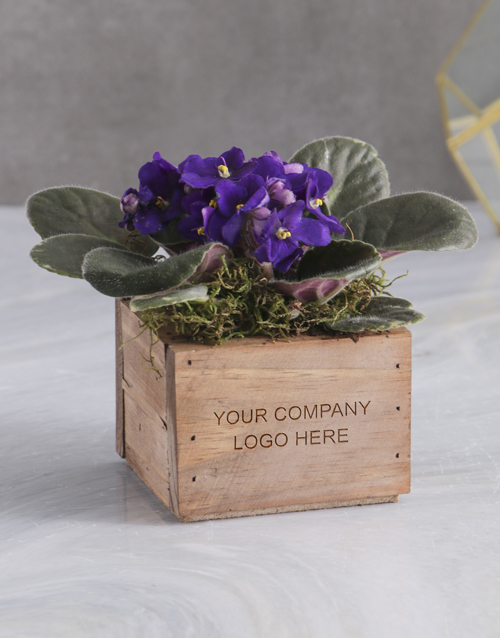 year-end: Personalised African Violet Crate!