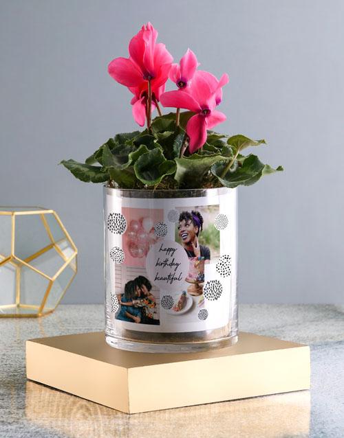 personalised: Happy Birthday Cerise Cyclamen In A Vase!