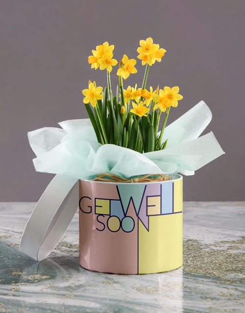 flowers: Get Well Soon Yellow Daffodils In Hatbox!