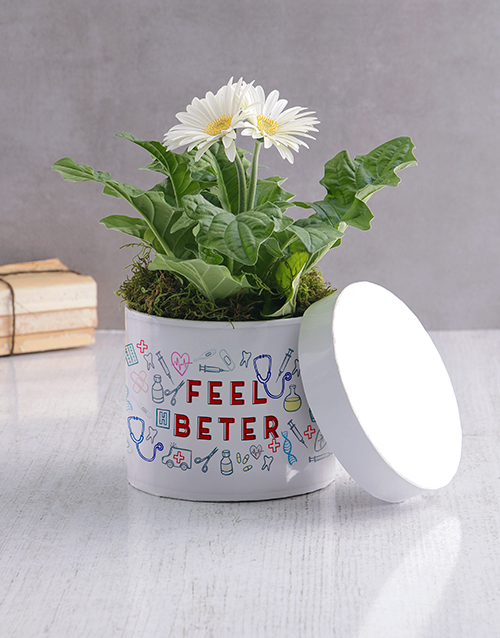 get-well: Feel Better White Gerbera Hatbox!