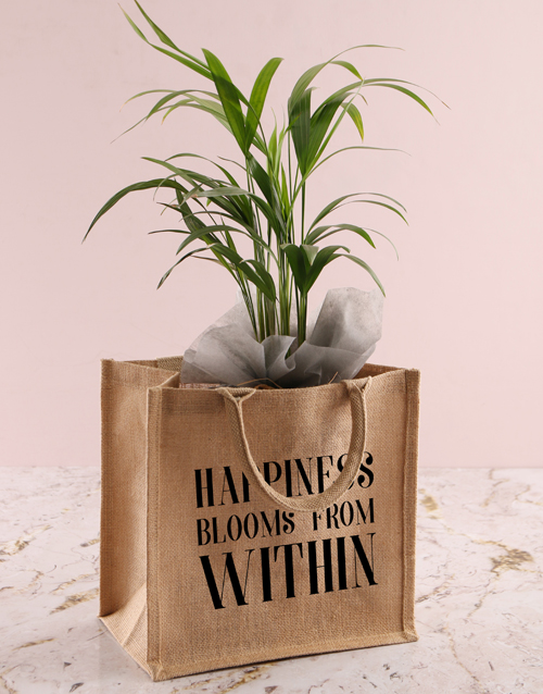 anniversary: Areca Bamboo Planter In Bag Of Happiness!