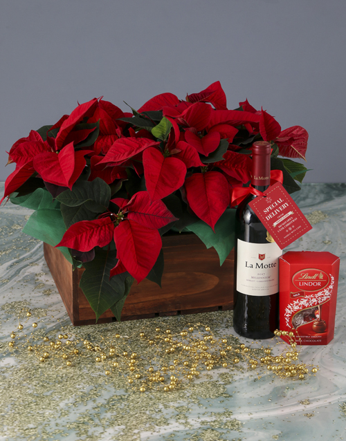 christmas: Special Delivery Poinsettia Hamper!