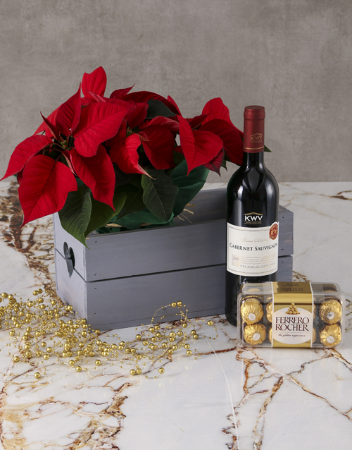 christmas: Love and Chocolate Poinsettia Hamper!