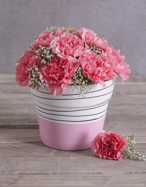 pottery: Bubblegum Pink Carnation in a Pink Pot!