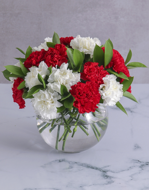 flowers: Striking Red and White Carnations in a Round Vase!