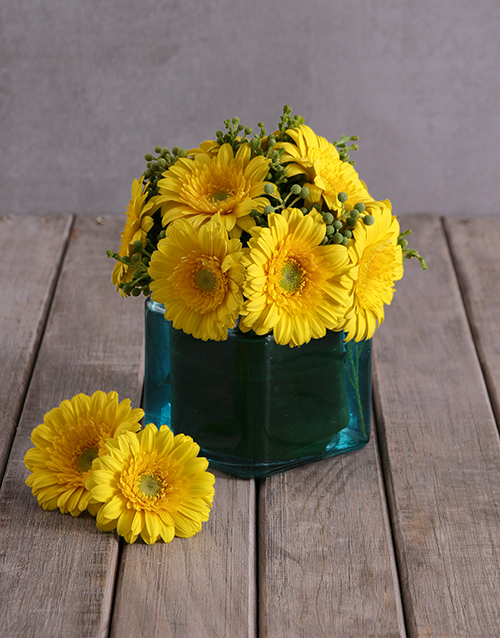 gerbera-daisies: Sunny Gerbera Array!