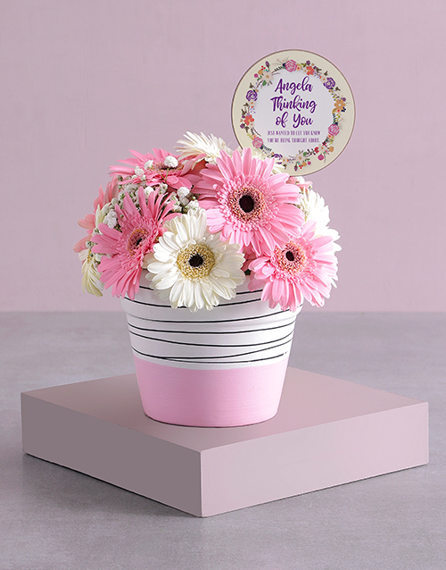colour: Personalised Thinking of You Gerbera Array!