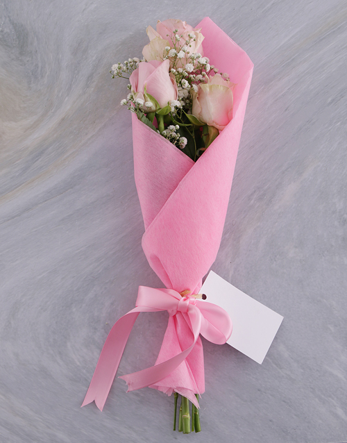 colour: Trio of Pink Roses!