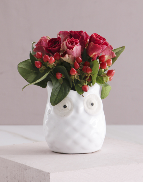 colour: Owl Pot Abracadabra Roses!
