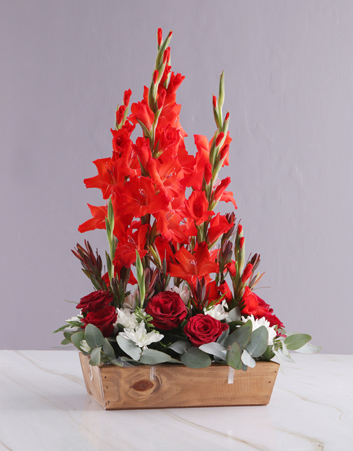 gladiolus: Red and White Gladiolus Arrangement!