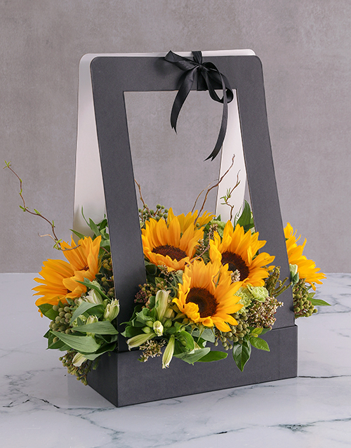 colour: Sunflower Display in a Black Box!