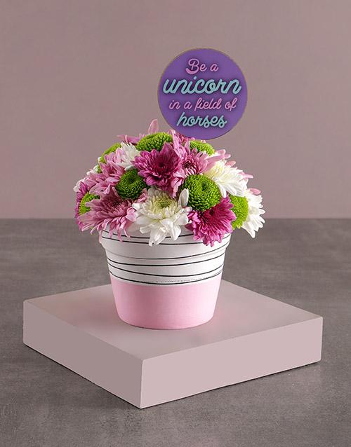 womens-day: Unicorn Sprays In Ceramic Pot!