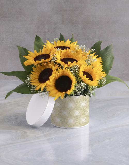 colour: Sunflower Box!