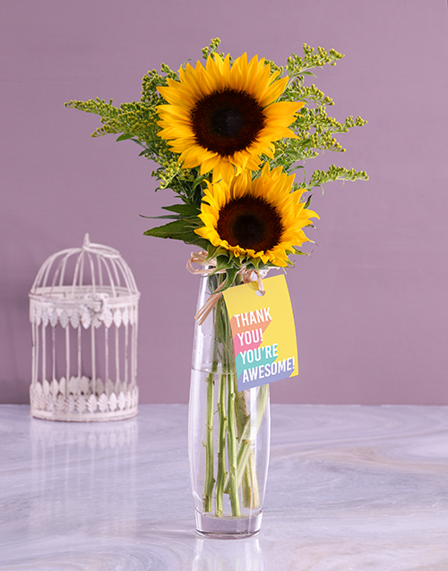 vase: Youre Awesome Sunflower Gift!